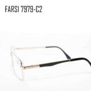 FAISI 7979-C2-2