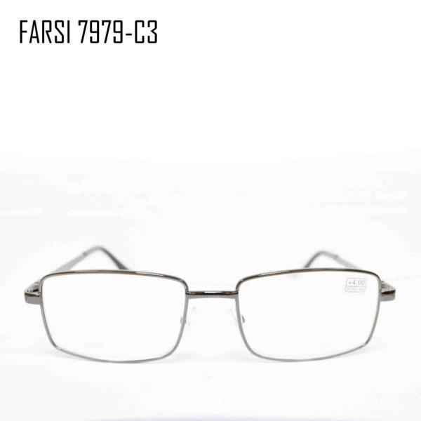 FAISI 7979-C3-1