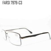 FAISI 7979-C3-2