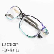 EAE 2231-C797-3