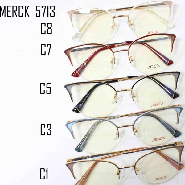 MERCK 5713-1