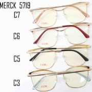MERCK 5719-2
